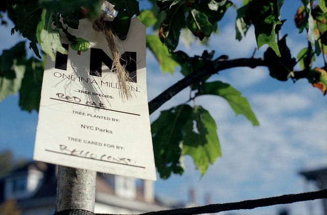 How do civic gateways work for everyone?